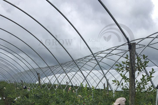 Multi-Bay Poly Tunnel Hoop House