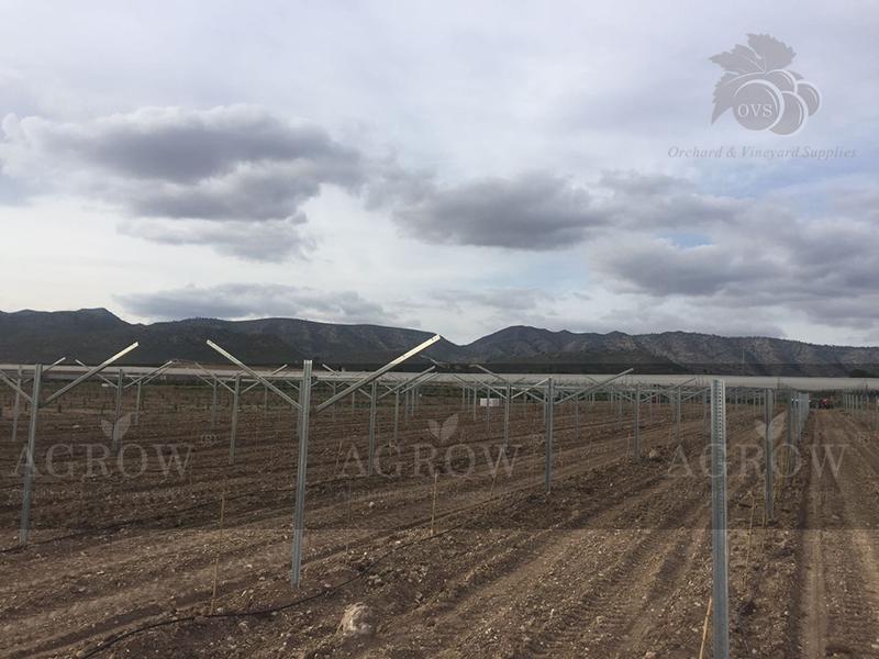 Estructura para Huertos y Viñedos España